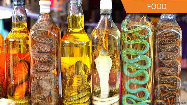 Since we're in Southeast Asia, why don't we try some snake wine!