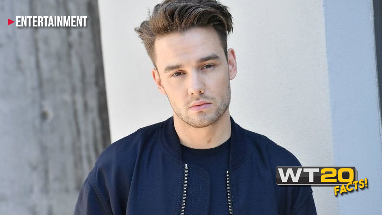 Liam Payne's 'Strip that Down' mimics Shaggy's 'It Wasn't Me'
